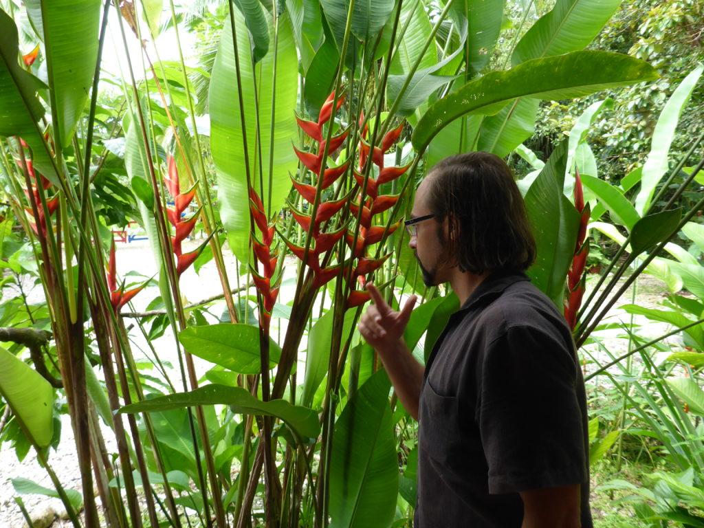 Dennis beim erklären der Pflanzen