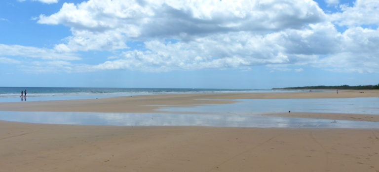 Surfer, Strand und Krokodile#Tamarindo
