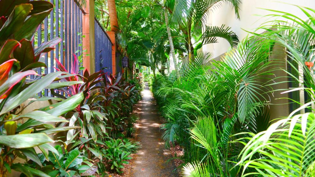 Weg zum Garten Eden