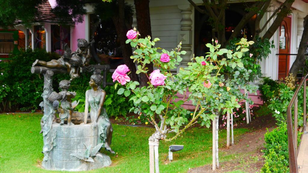 und natürlich die Rosen