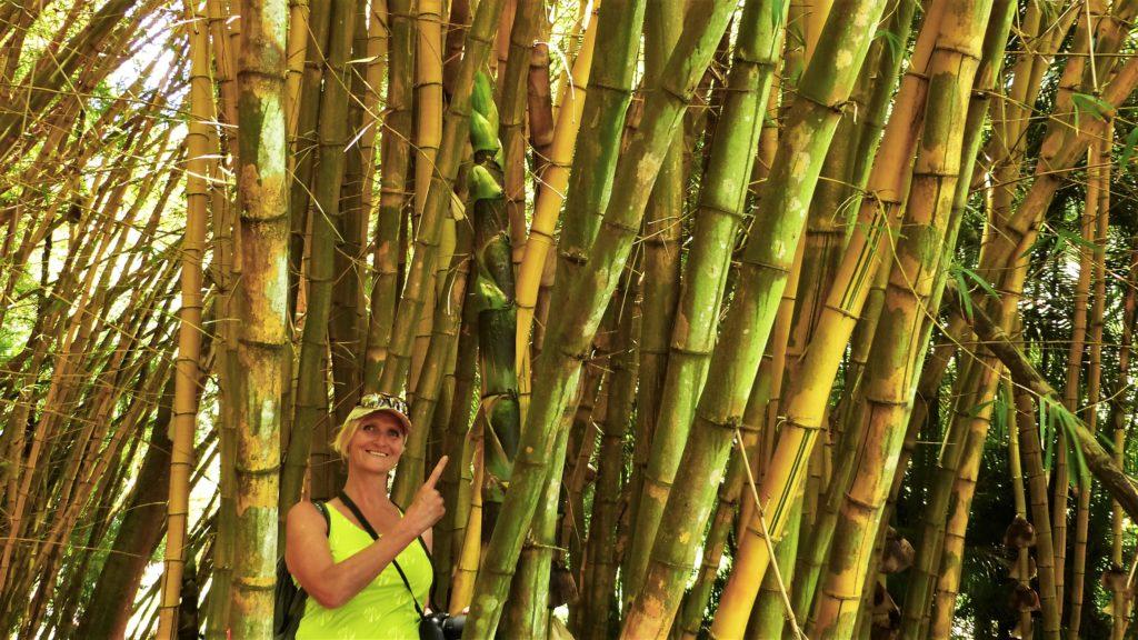 Monika im Bambuswald