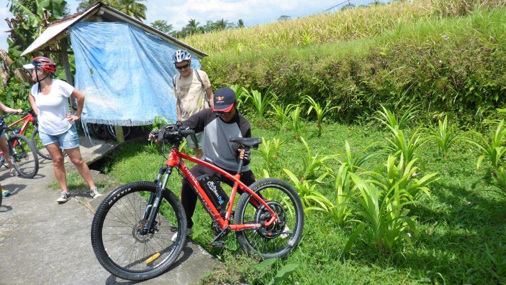 Fahrradbergung aus dem Reisfeld