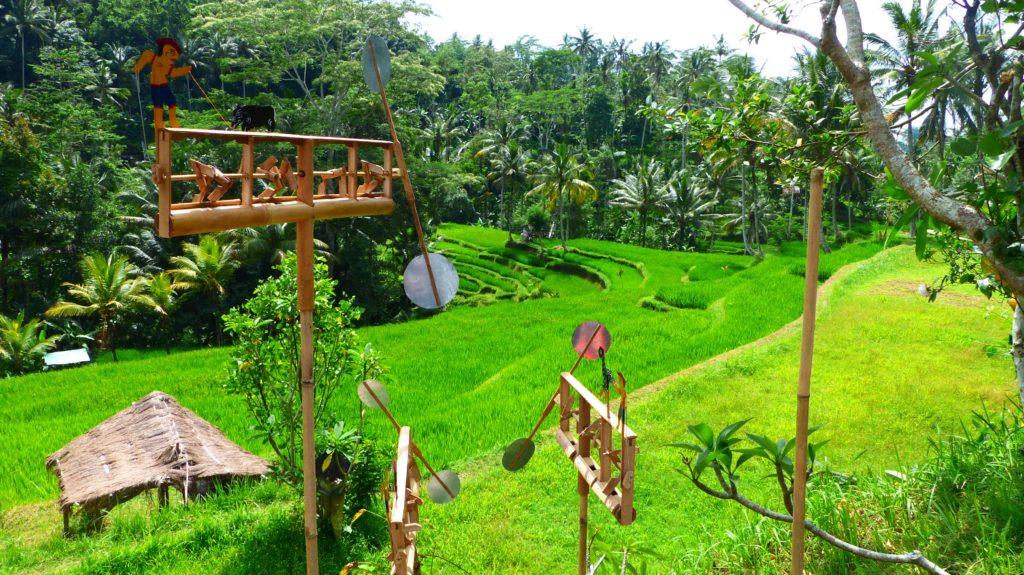 wieder oben angekommen genießen wir noch einmal den Blick auf die sattgrünen Reisterrassen.