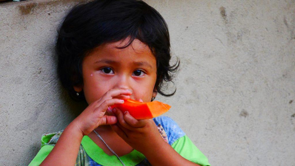 frische Papaya schmeckt hervorragend
