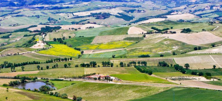 #Montalcino und Brunello#