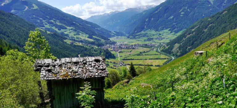 #Kulinarik und Natur#Osttirol#