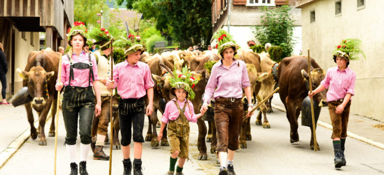#Alptag#Schwarzenberg#gekrönte Kühe#
