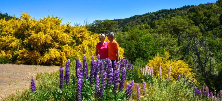 Hippiemarkt und Frühling in Bariloche