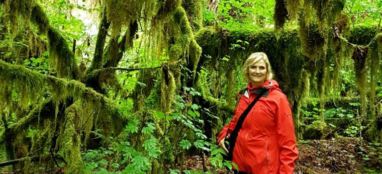 Plan B – der Olympia Nationalpark in Washington
