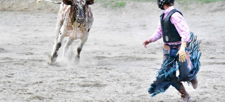 Rodeo – Von Cowgirls und wilden Bullen