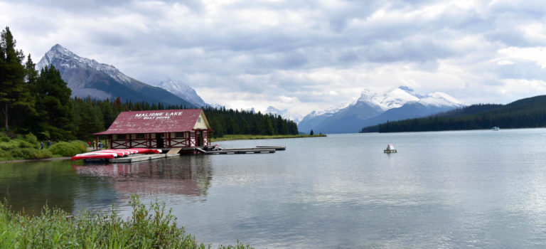 "Eine ""drei  Bergseentour"" zum Medicin Lake, Maligne Lake und Moose Lake"