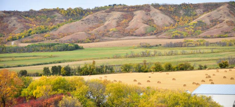 Durch die Prärie von Saskatchewan