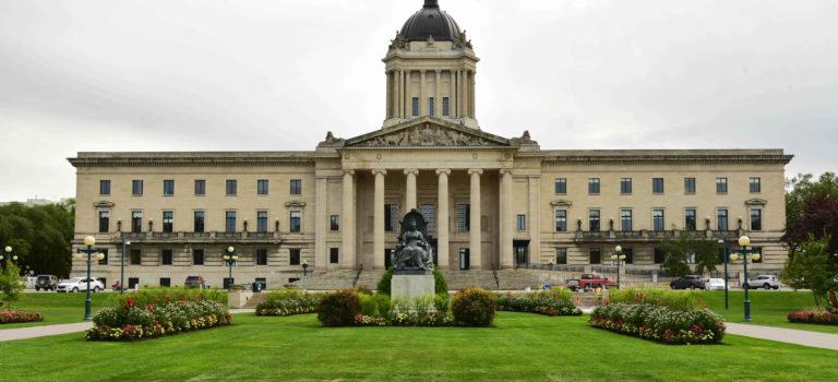 Die Bisonherde von Winnipeg