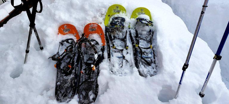 Aussergewöhnliches Schneeschuhwandern im Märchenwald