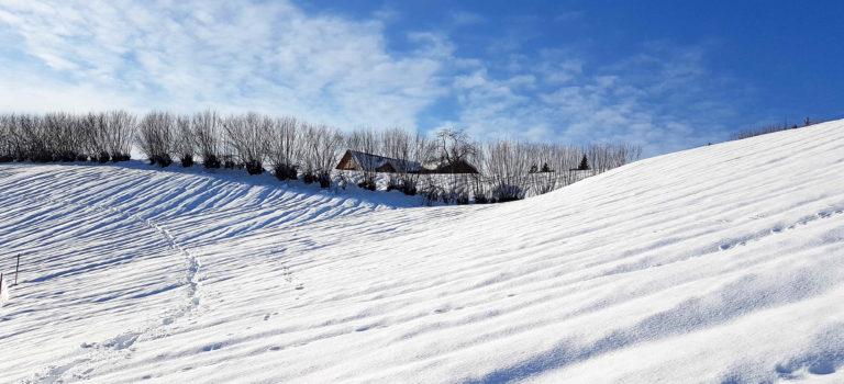 Bildstein – ein faszinierendes Schneeschuhwander – Paradies