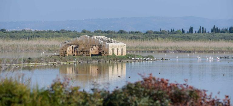 Riserva Naturale di Venidcari – Vogelschutzgebiet und eine verlassene Thunfischfabrik