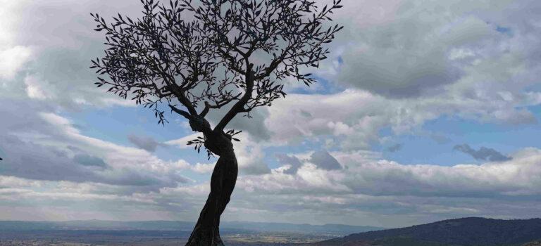 Cortona – eines der schönsten Bergdörfer der Toscana