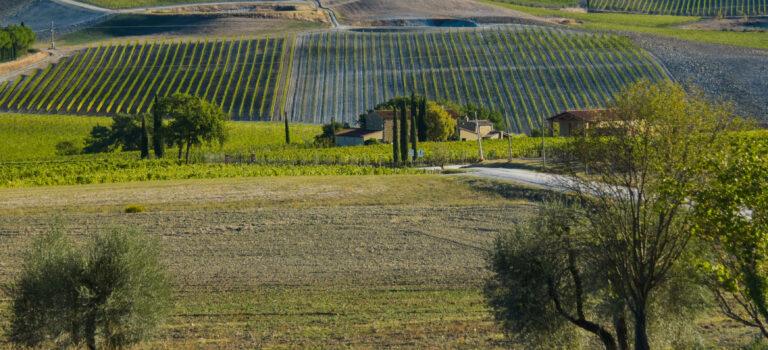 Wo bitte ist die schöne Aussicht? Agritourismo Il Cocco